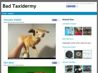 badtaxidermy.com