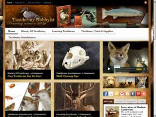 taxidermyhobbyist.com